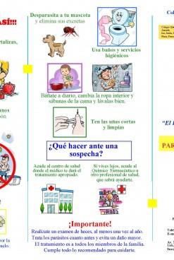 Boletín Comunitario CQFP N°1